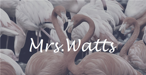 "A picture of flamingos with the text ""Mrs. Watts"" over it"